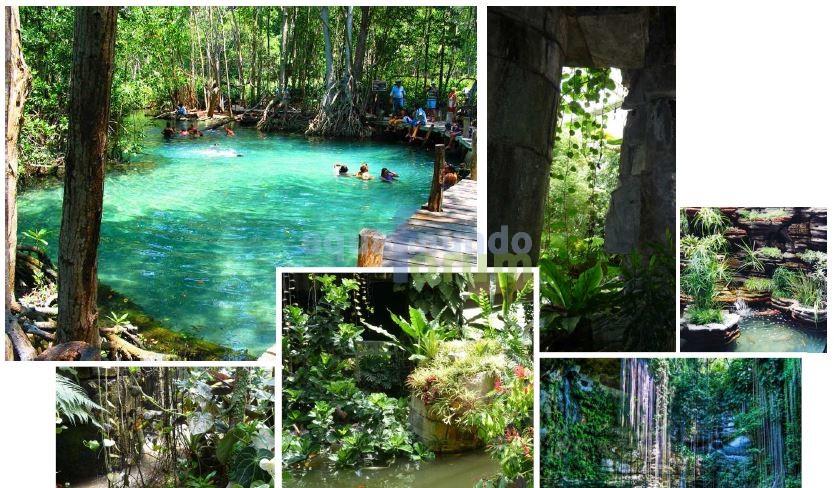 Aqua Mundo Forum Center Parcs (Vienne) Le Bois aux Daims krijgt Cenote Pool in de Aqua Mundo # Center Parc Bois Aux Daims Aqua Mundo